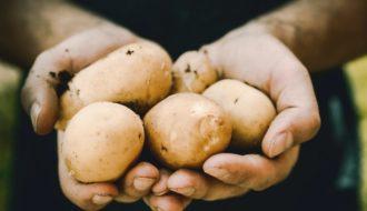 ziemniaki w rękach, na diecie, fakty i mity, www.wittalna.pl, Kinga Wittenbeck